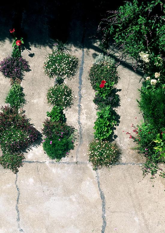 Crack-Garden-a-San-Francisco-di-GM-Landscape-Architecture