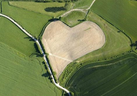 campo-a-forma-di-cuore