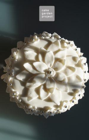 cake-in-pasta-di-zucchero-per-intolleranti-al-lattosio