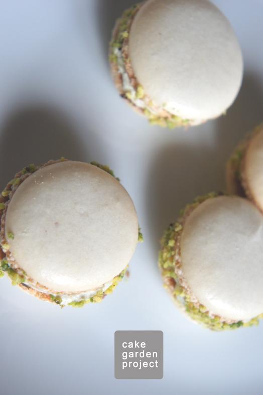 macarons-con-ganasce-di-cioccolata-bianca-e-pistacchi