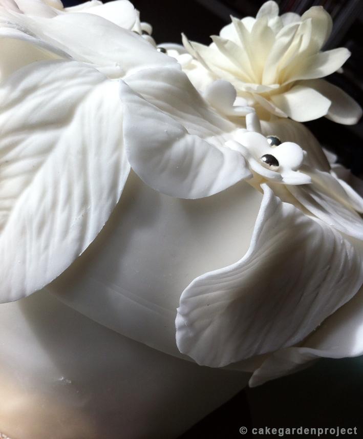 cake-primavera