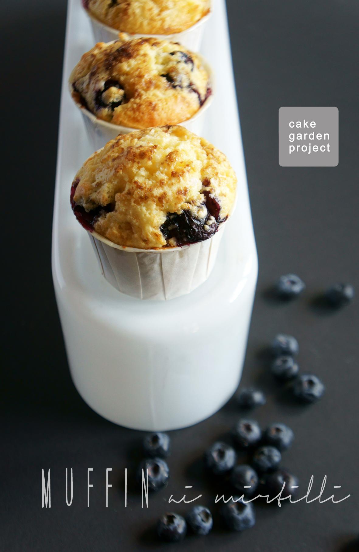 muffin-ai-mirtilli