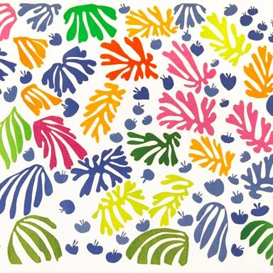 fiori di Matisse