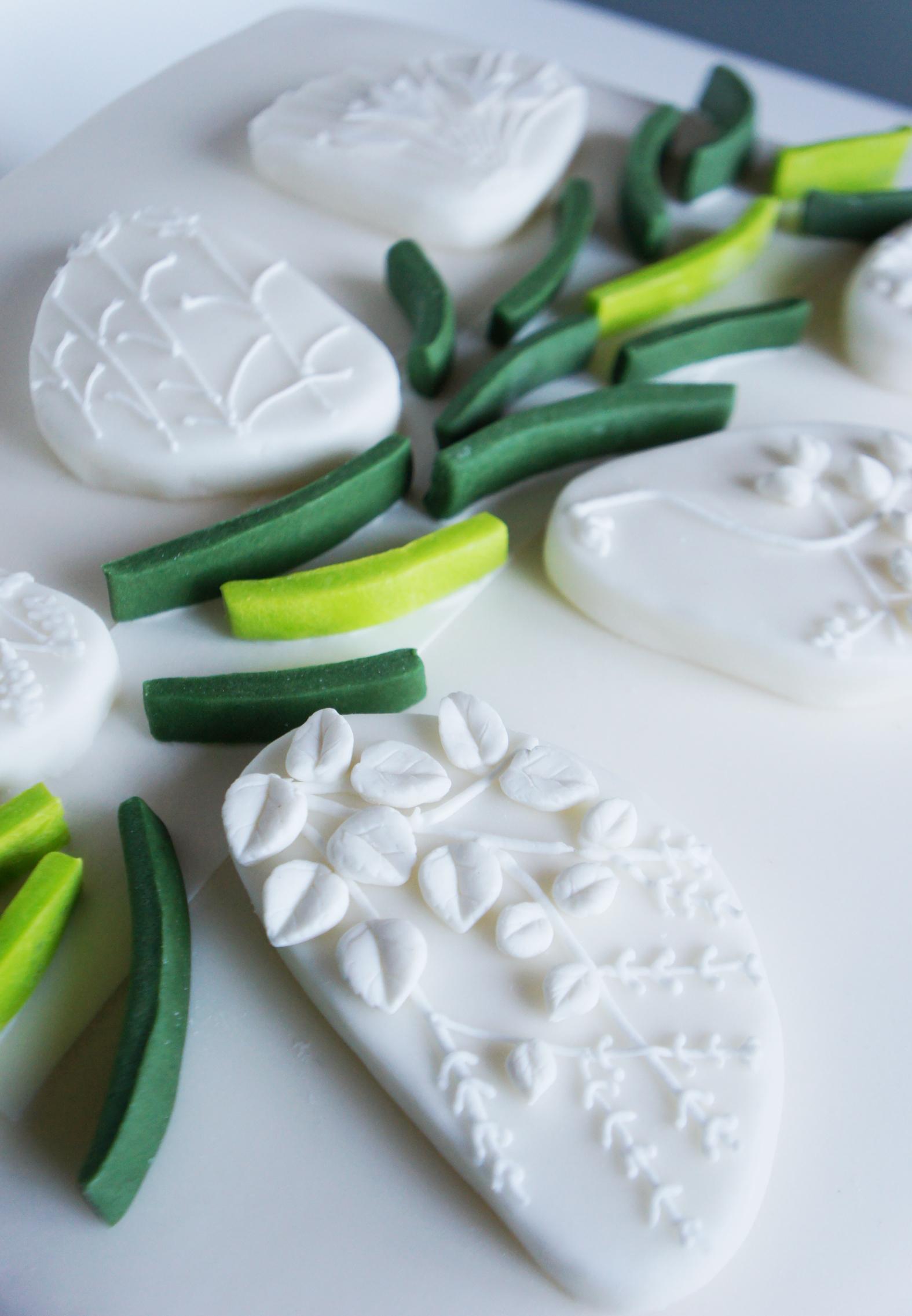 cake orto medicinale