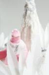 la torta del dinosauro rosa