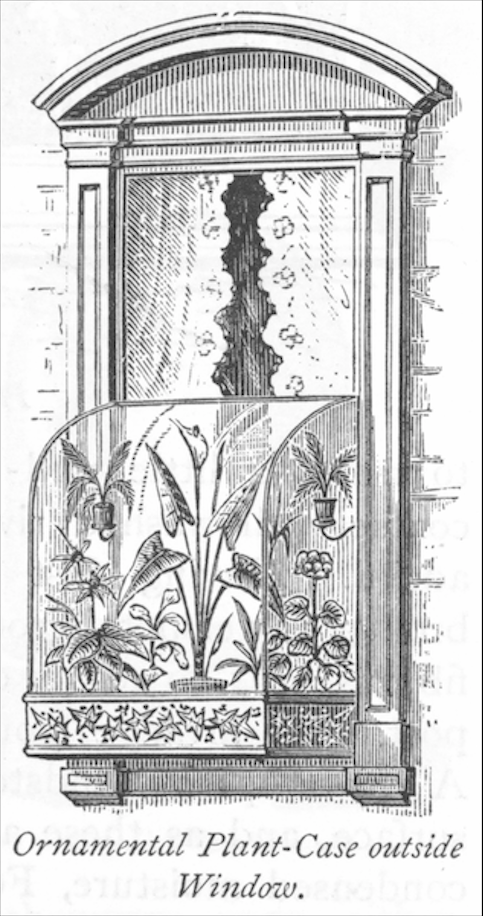 ward-case-window