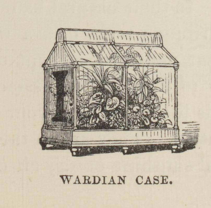 wardian-cassette
