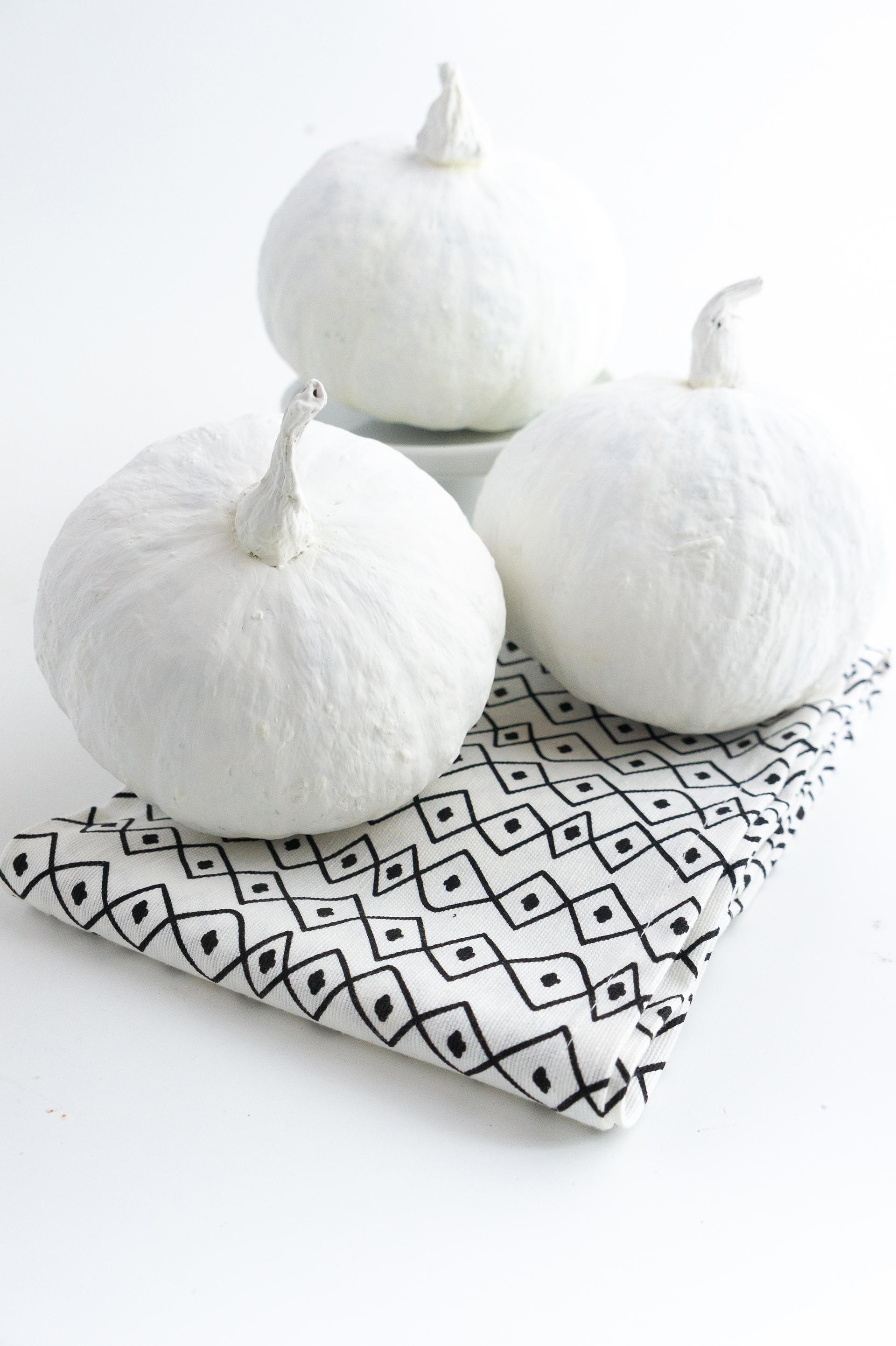 zucca-bianca