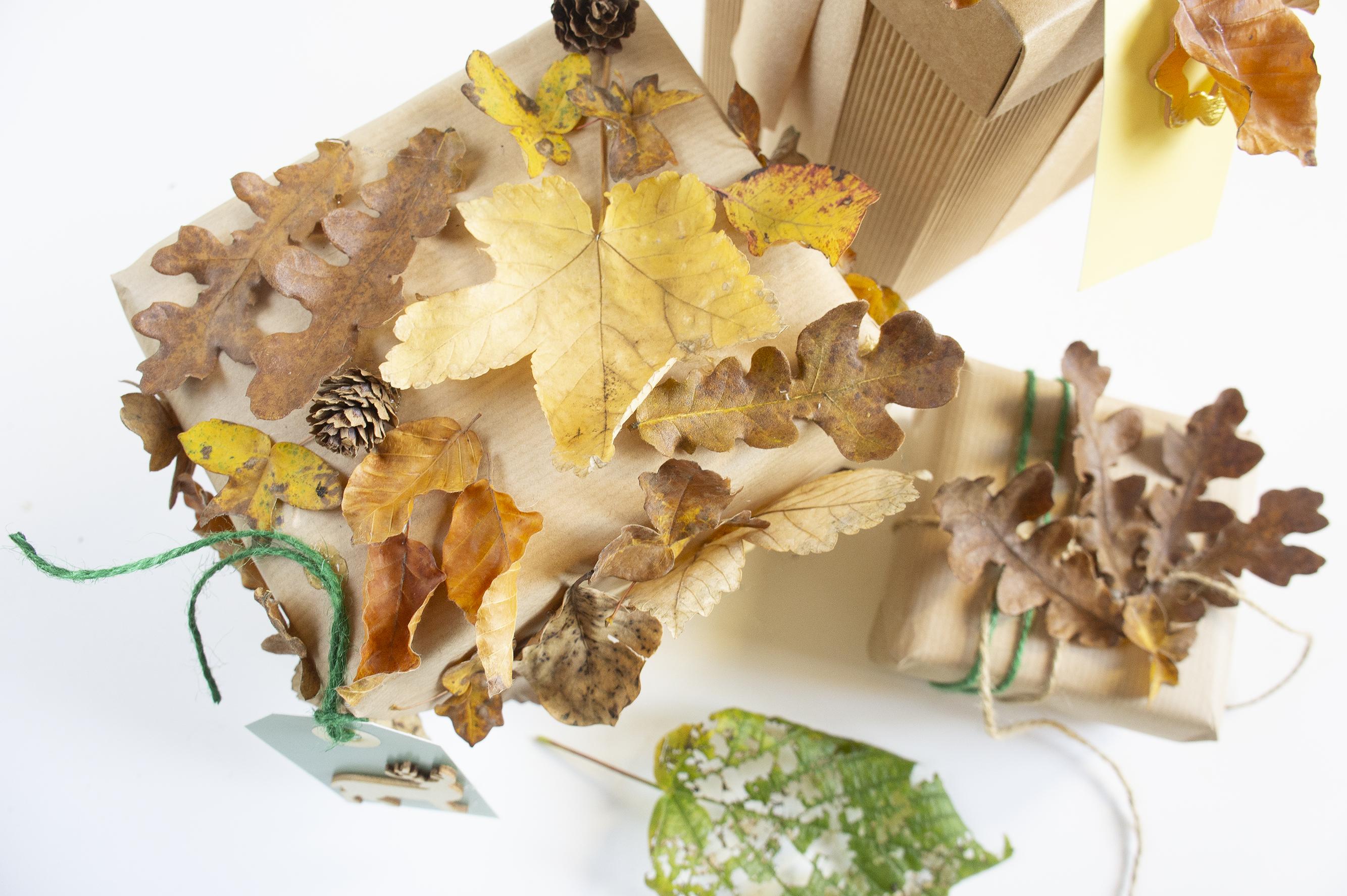 pacchetti-foglie